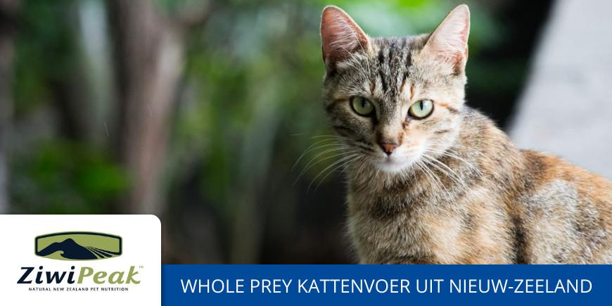Goedkoop Ziwipeak kattenvoer kopen. Ziwipeak kat ervaringen